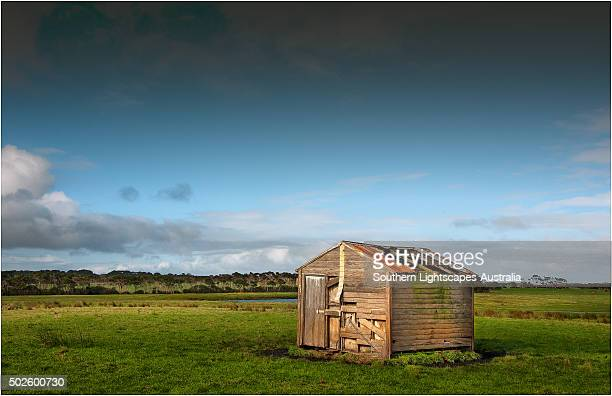Old and abandoned farm hut in the rurals of King Island, Bass Strait, Tasmania, Australia.