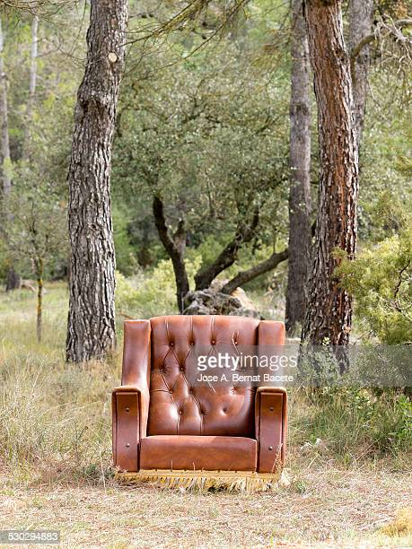 Old armchair left in a forest