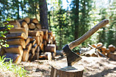Old axe standing against a piled pieces of firewood in wood