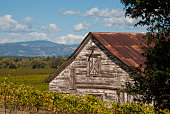 Old barn and Russian River Valley Sonoma County California