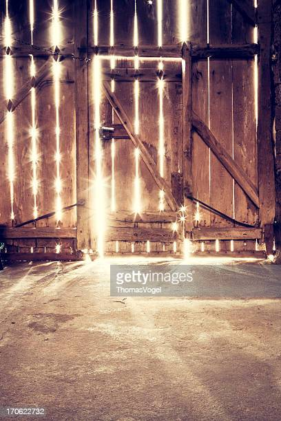 Old barn door - Sunlight Wood