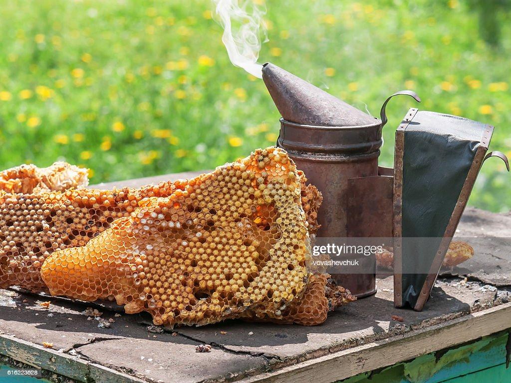 old bee smoker : Stock-Foto