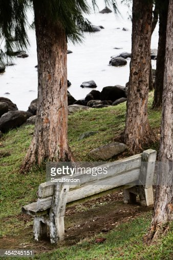 Old bench : Stock Photo