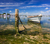 Derelict boats in the backwaters of Holes Bay, Poole Harbour at low tide