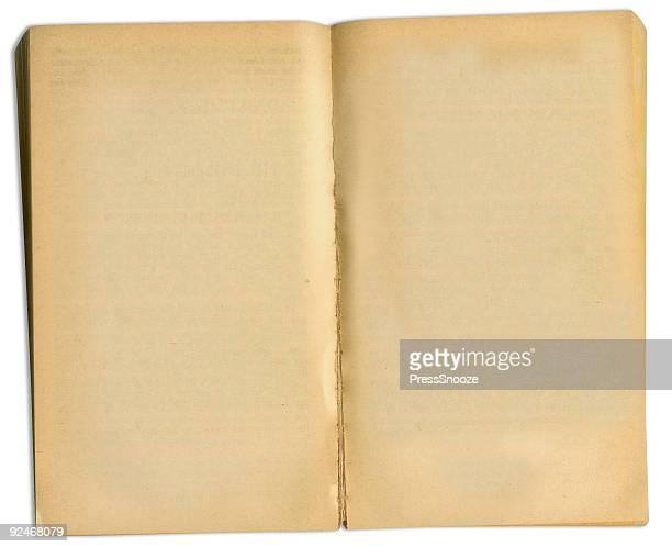Altes Buch mit path