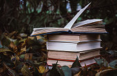 stack of old books on the background of the autumn garden and fallen yellow leaves. Exam preparation and study