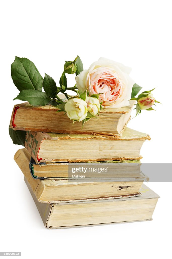 old books and rose : Stock Photo