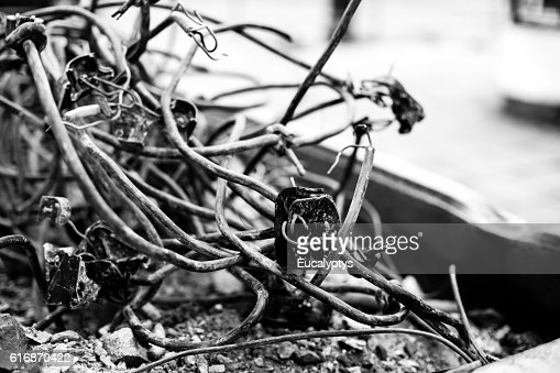 Old cables in the container : Stock Photo