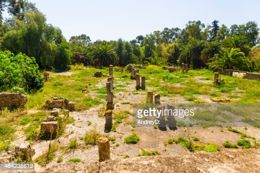 Old Carthage ruins : Stock Photo