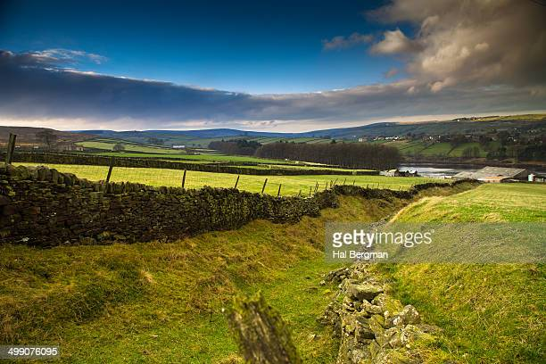 Old Cattle Track on Haworth Moor