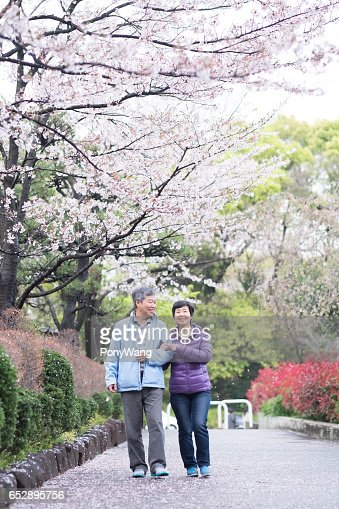 Old couple walk in park : Stock-Foto