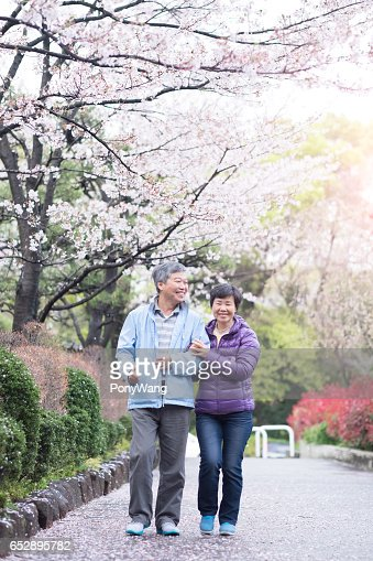Old couple walk in park : ストックフォト