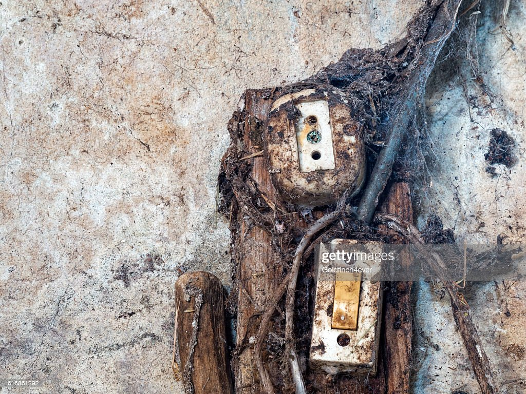 Old electrical wiring and switch. : Stock Photo
