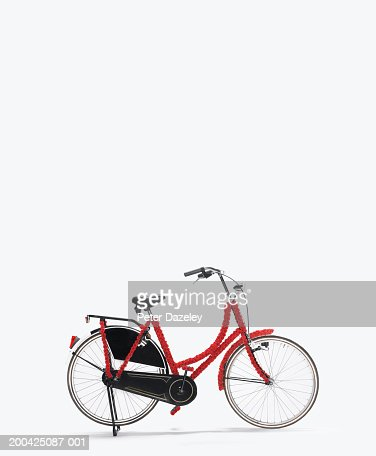 Old fashioned bicycle covered in red flowers, side view : Stock Photo