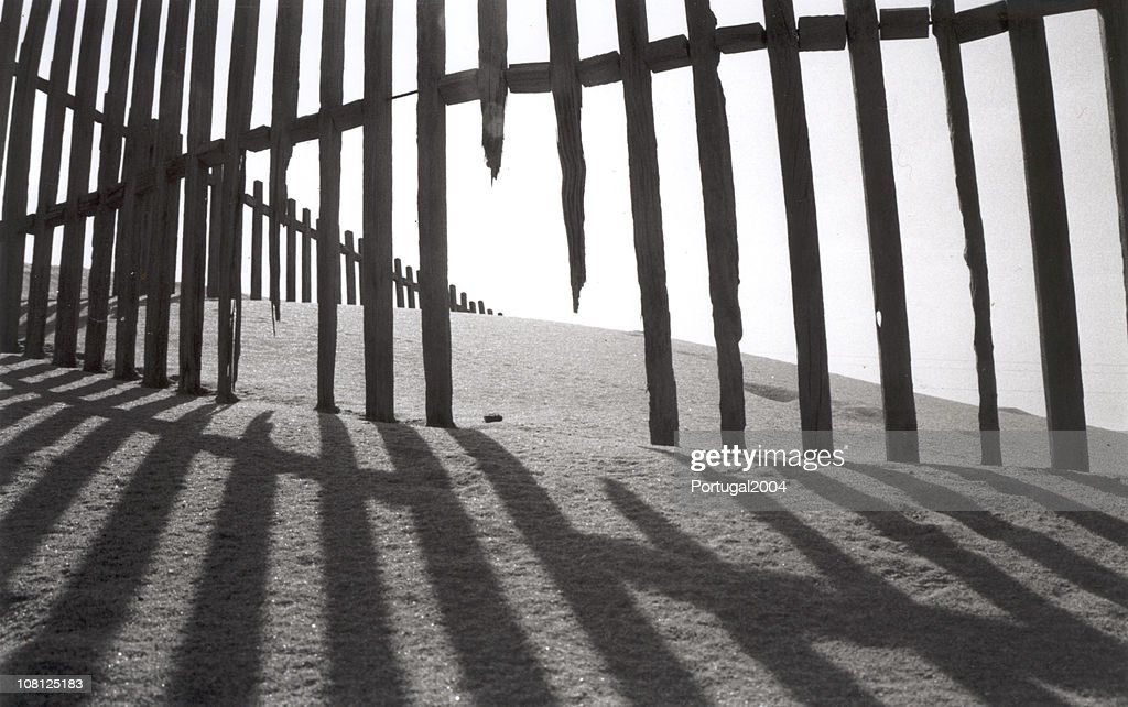 Old Fence : Stock Photo