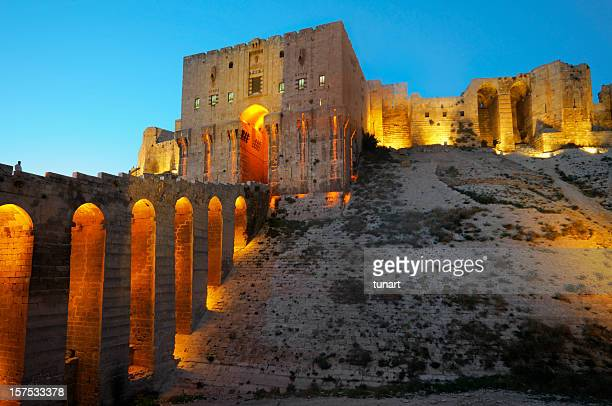 Old fortress of Aleppo, Syria