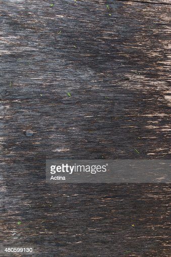 Old gray vintage background veneer : Stock Photo