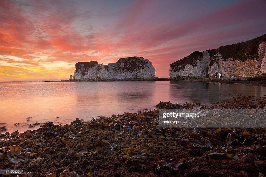 Old Harry Rocks, sunrise