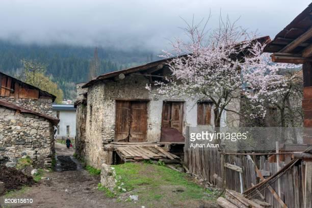 Old House in Mestia,Upper Svaneti,Georgia