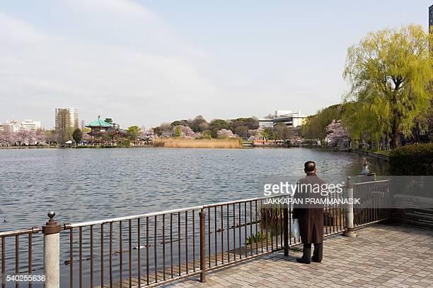 Old man and Shinobazu pond
