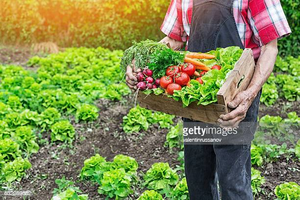 Alter Mann halten Rost mit rohem Gemüse