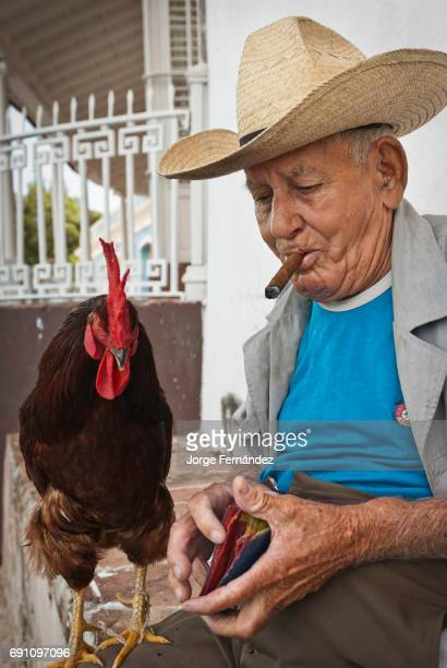 Old man with straw hat holding a rooster on his leg and looking for money in his wallet