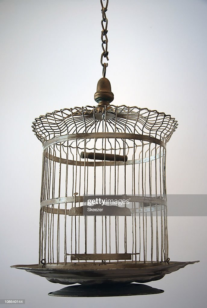 Old Metal Bird Cage