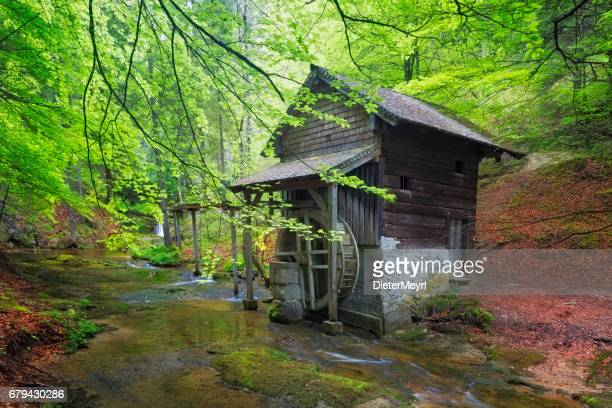 Old Mill in Scheffau - European Alps at springtime