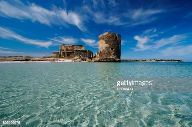 Old Pelosa tower Saline beach Stintino Sasssari Sardinia Italy Europe