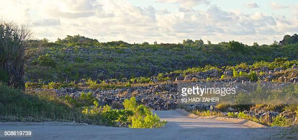 Old Phosphate Mine | Nauru