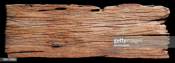Driftwood stock photos and pictures getty images