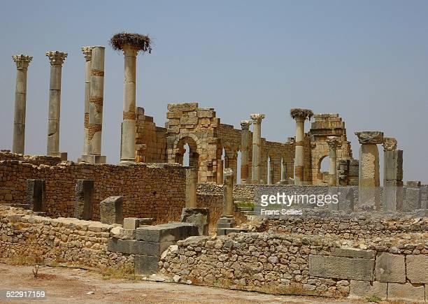 Old Roman ruins in Volubulis, Morocco