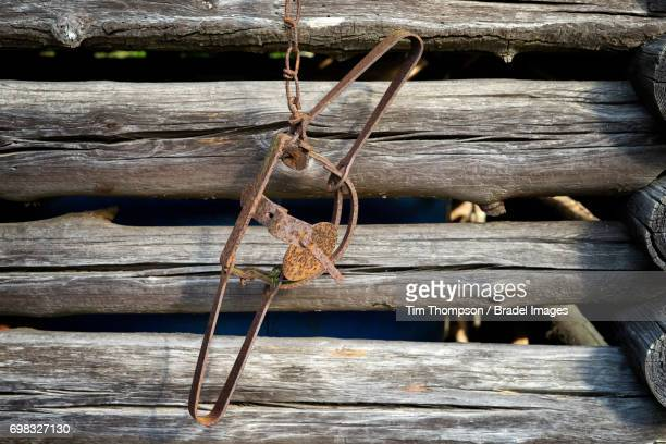 Old Rusty Trap