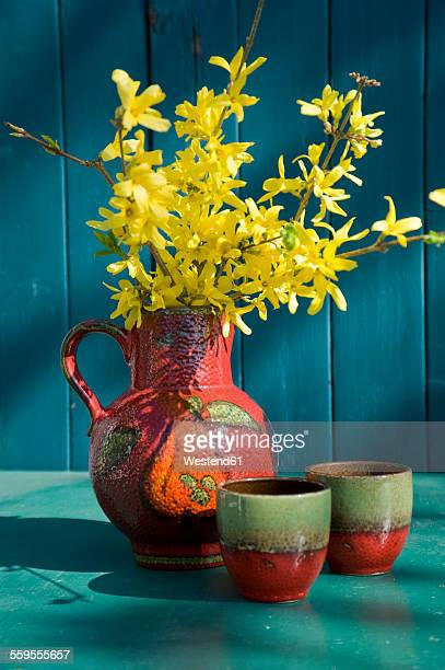 Old Seventies jar with blossoming twigs of Forsythia