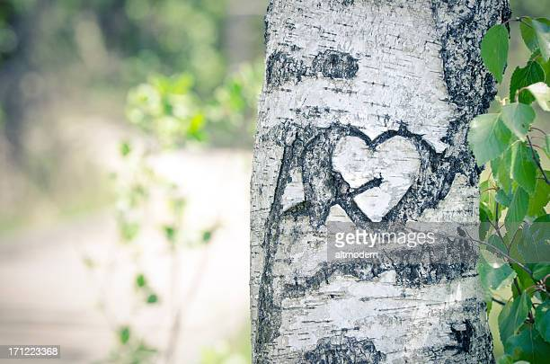 Old signature of love in a tree