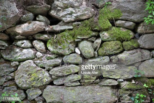 Old stone wall with moss : Stock Photo