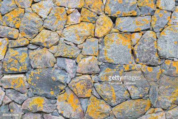 Old surrounding wall at a fortress made of stones with yellow lichen.