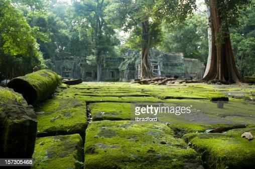 寺院の遺跡の近くには、ジャングル、カンボジアのアンコールワット