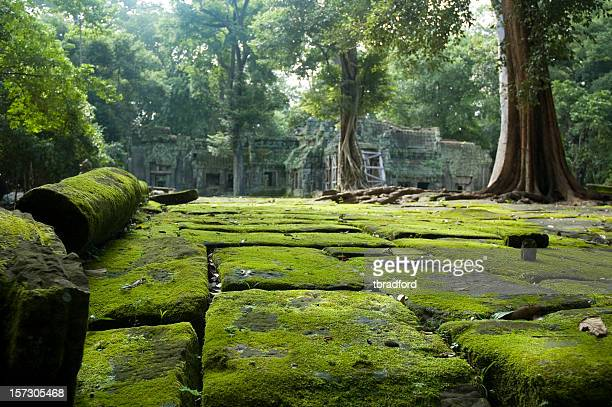 Old Temple Ruins In The Jungle Near Angkor Wat, Cambodia