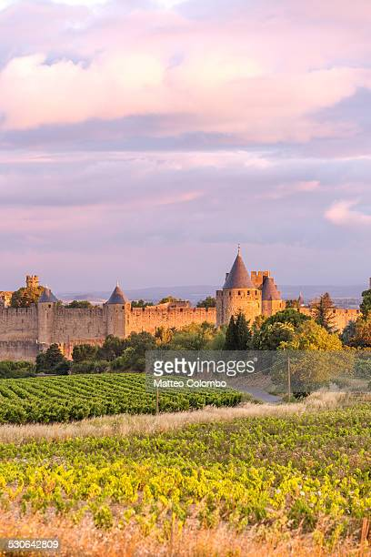 Old town and vineyeards at sunrise, Carcassonne
