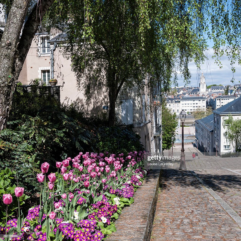 Old town, Angers, France
