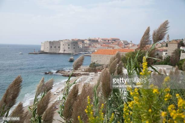 Old Town Dubrovnik Landscape