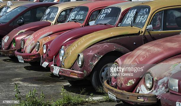 Old Volkswagen Beetle cars used as taxi cabs in a large yard for impounded cars placed in guard due to unpaid fines in Mexico City on June 23 2015...