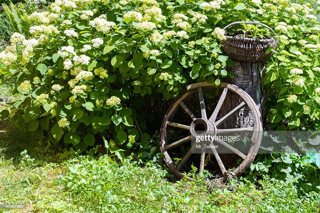 Beau Old Wagon Wheel Garden Decoration : Stock Photo