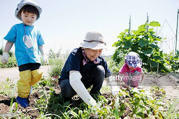 old woman and kids doing farmwork