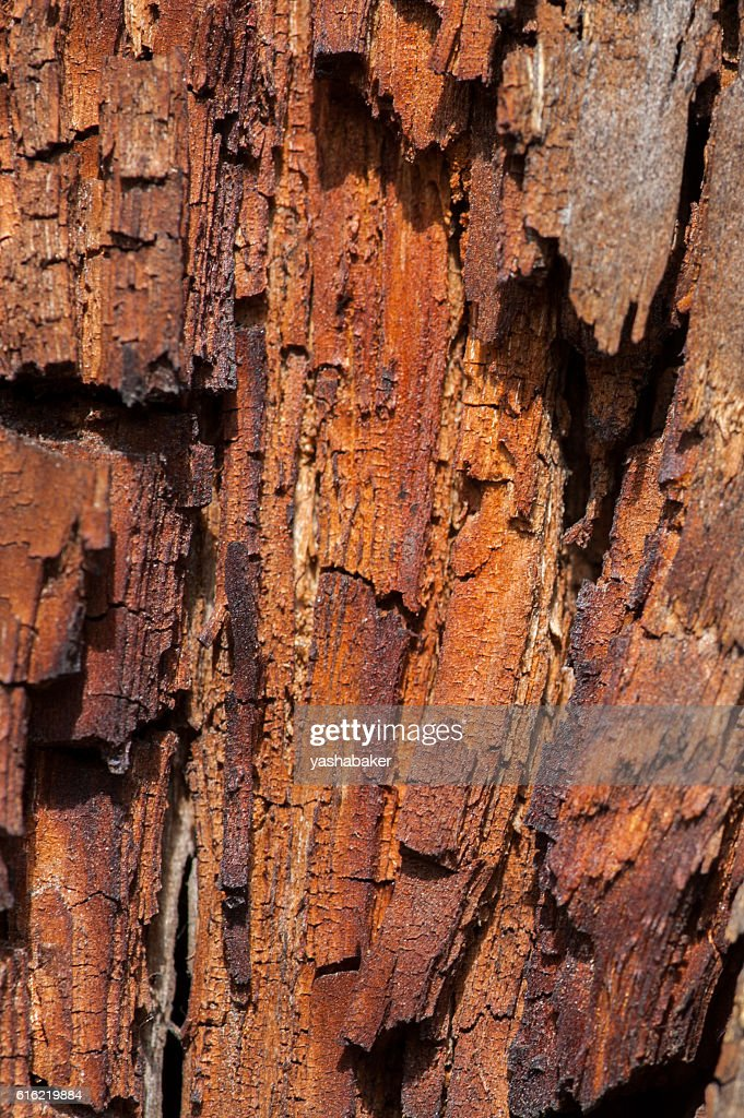 Old wooden and rusty texture : Stockfoto