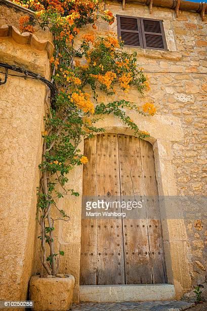 Vecchia porta in legno e Buganville