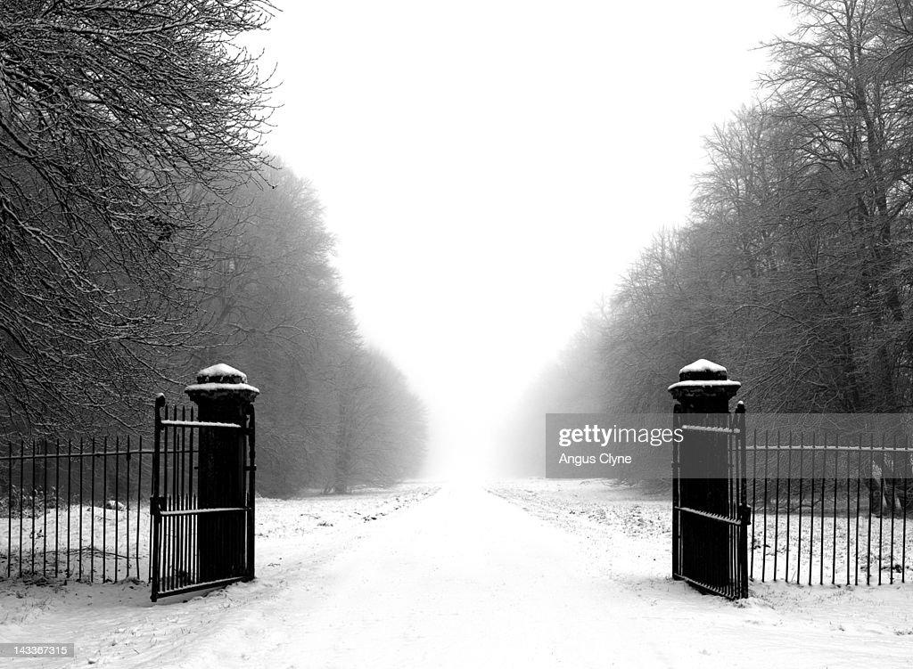 Old wrought iron gates : Stock Photo
