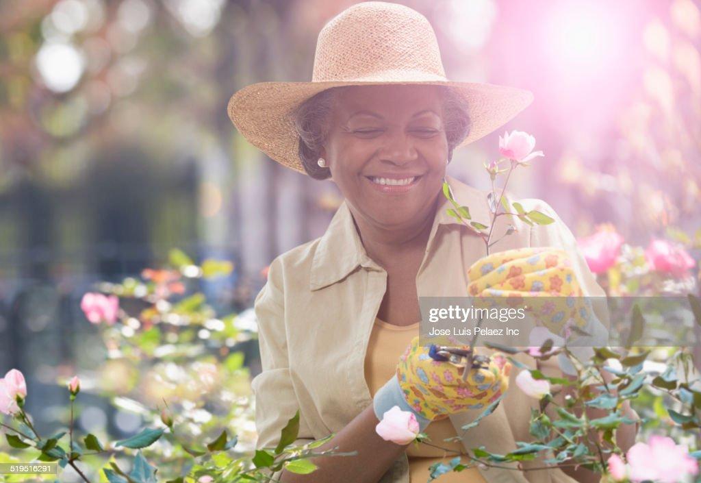 Older African American woman trimming flowers in garden