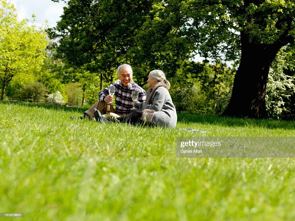 Older couple drinking wine at picnic